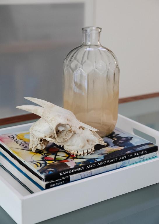 skull-decor-coffee-table-accessories